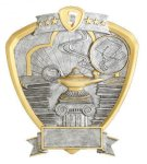 Signature Series Knowledge Shield Award Academic Trophies