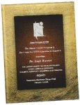 Gold & Burgundy Acrylic Art Plaque Award Acrylic Award Plaques