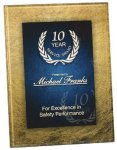 Gold & Blue Acrylic Art Plaque Award Acrylic Award Plaques