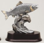 Fish All Trophy Awards