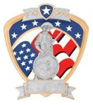 Signature Series National Guard Shield Award Eagle Trophies