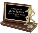Standing Landscape Plaque Football Trophy Awards
