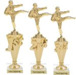 First - Third Place Karate Trophies 1 Karate Trophy Awards
