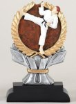 Karate Impact Trophy Martial Arts Trophies