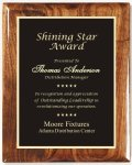Walnut Gloss Plaque Recognition Plaques