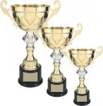 Gold Metal Loving Cup with Silver Accent Trophy Cups