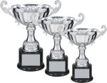 Silver Metal Loving Cup Trophy Cups