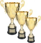 Gold Metal Cup Trophy Trophy Cups