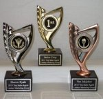 Metal Achievement Award Victory Trophies