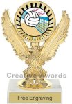 Eagle Volleyball Trophy Volleyball Trophy Awards